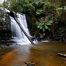 Lilydale Falls by Keith Midson