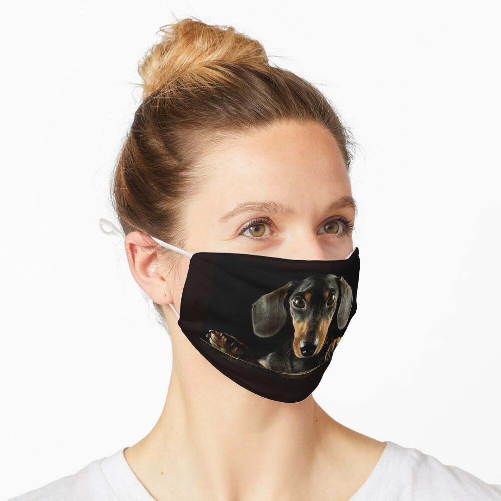 Dachshund Dog photo portrait Mask