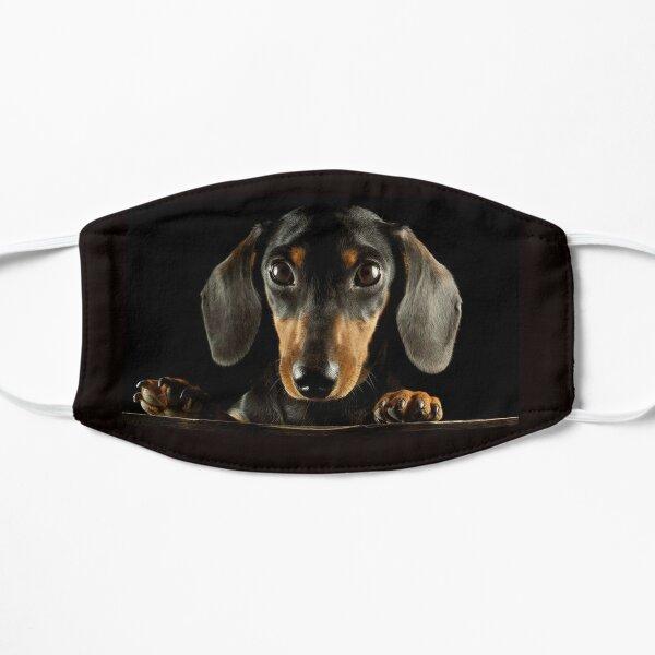 Dachshund Dog photo portrait Flat Mask