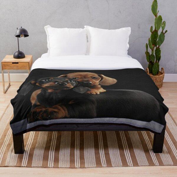 Dachshund Dog portrait photo pupies Throw Blanket
