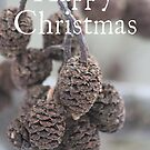 Pine Cone Christmas card by Samantha Higgs