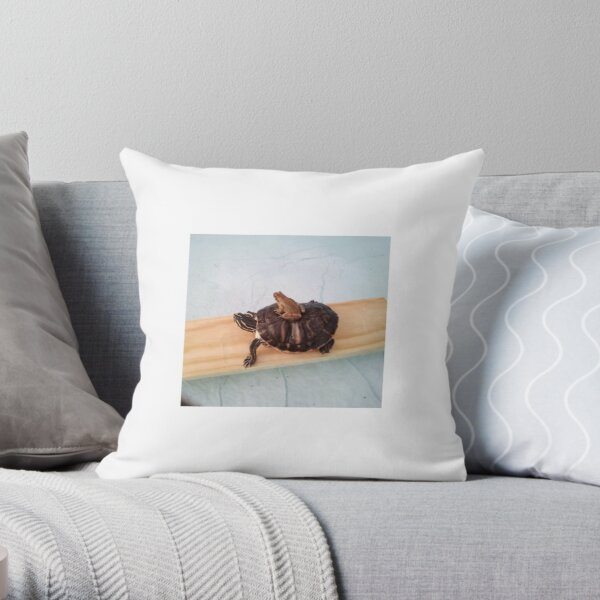 Terrapin Pillows Cushions Redbubble