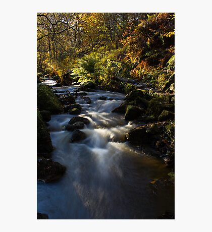 Autumn on Wyming Brook I Photographic Print