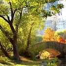 Autumn Paradise, Central Park - New York City  by Alberto  DeJesus