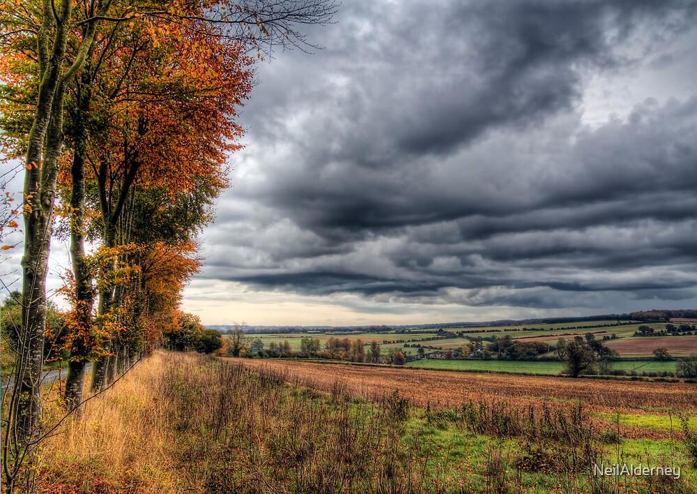 Autumn Rains by NeilAlderney