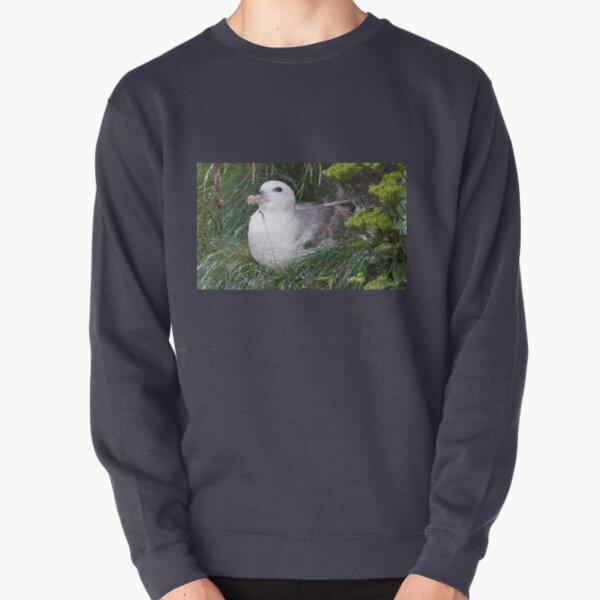 Fulmar Pullover Sweatshirt