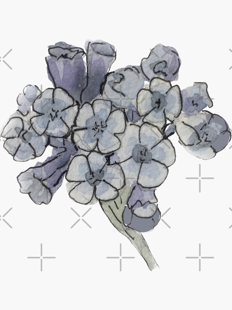 Blue Cowslip Illustration in Watercolor by WitchofWhimsy