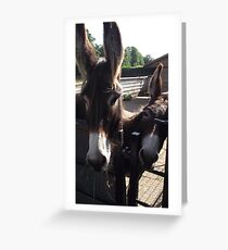 Just the Two of us! Greeting Card
