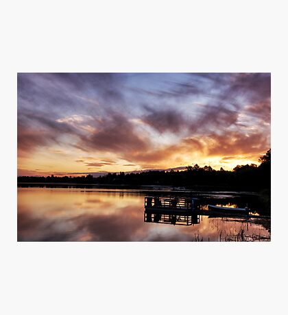 Golden tapestry Photographic Print