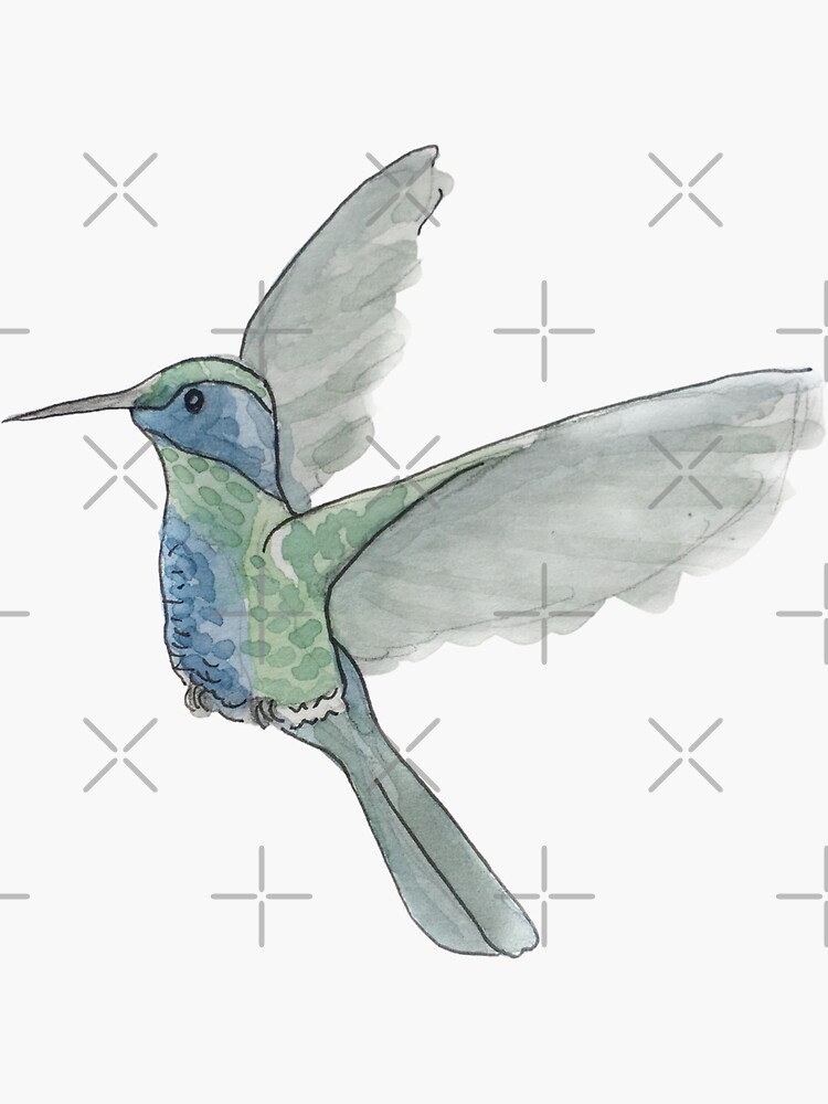 Cute Hummingbird Illustration in Watercolor by WitchofWhimsy