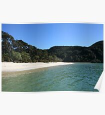 Abel Tasman Beach - New Zealand Poster