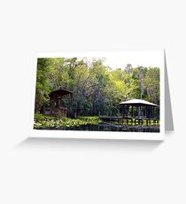 Governor's Creek Artistic Photograph by Shannon Sears Greeting Card
