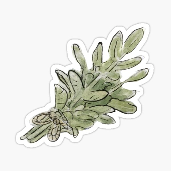 Sage Plant Bunch Illustration in Watercolor Sticker
