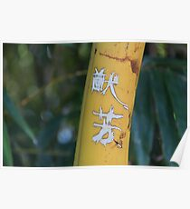 Inscribed bamboo Poster