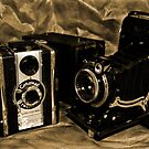 Old Cameras 2 by Samantha Higgs