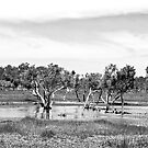 Rural Denmark 2 in Black and White by pennyswork