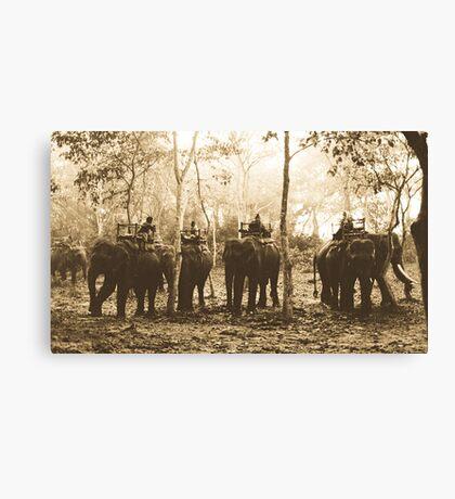 Elephants at Dawn Canvas Print