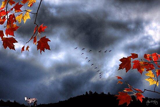 Spirit Pony in October Storm by Wayne King