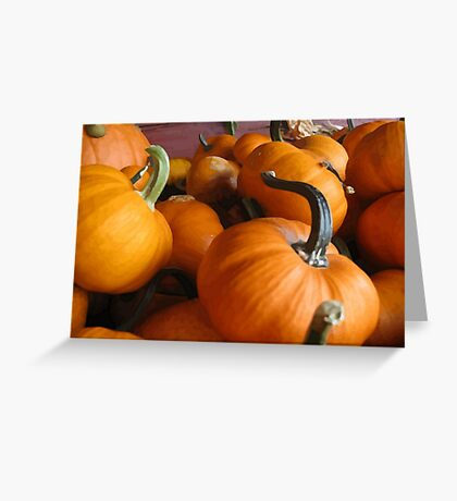 Vector Style Harvest Of Pumpkins Greeting Card