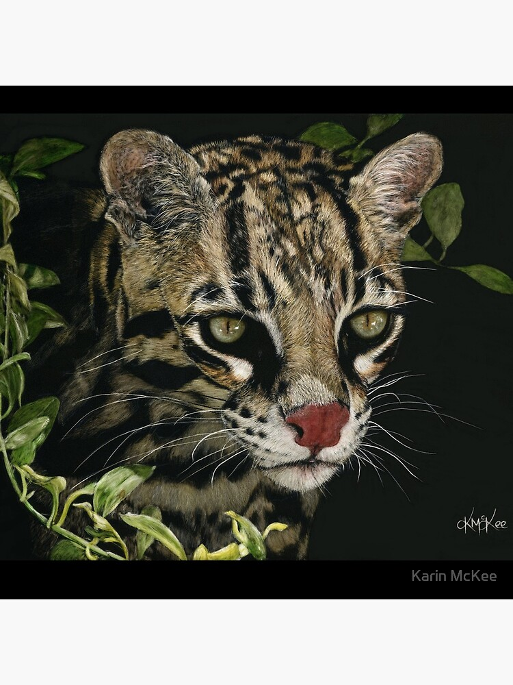 A Hunter's Focus by kjmckee