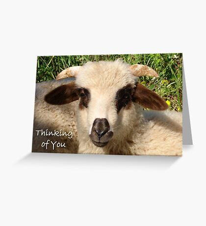 Ewe Portrait With Thinking of You Greeting Greeting Card