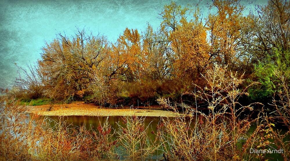 Floating Bed Of Leaves..Caldwell, Idaho by Diane Arndt