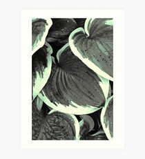 Leaves - 2 (duotone) Art Print