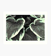 Leaves - 1 (duotone) Art Print