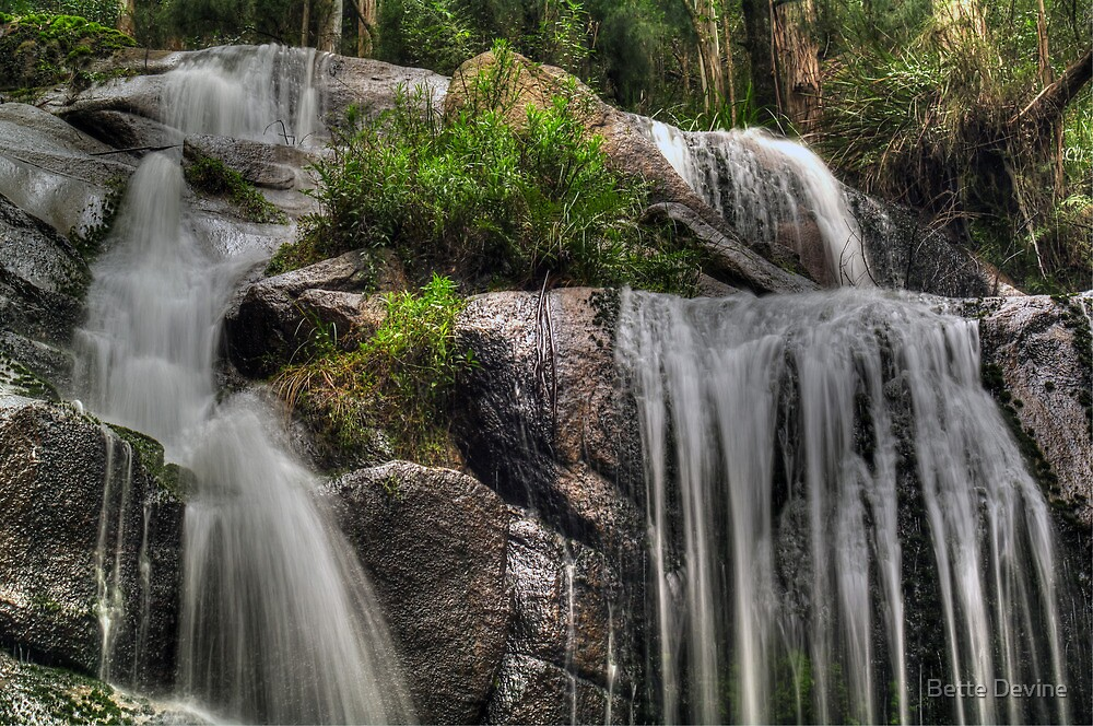 Toorongo Falls by Bette Devine