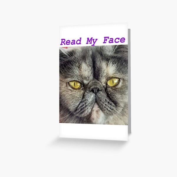 Grey Grumpy Cat Greeting Card