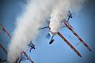 Smoking Pass - Wingwalking - Shoreham 2013 by Colin  Williams Photography