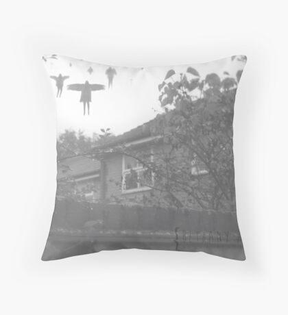 25/365 Throw Pillow