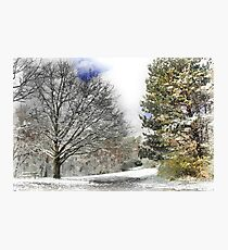 Snowy in Western Pennsylvania Photographic Print