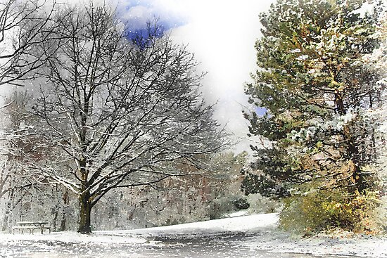 Snowy in Western Pennsylvania by shutterrudder