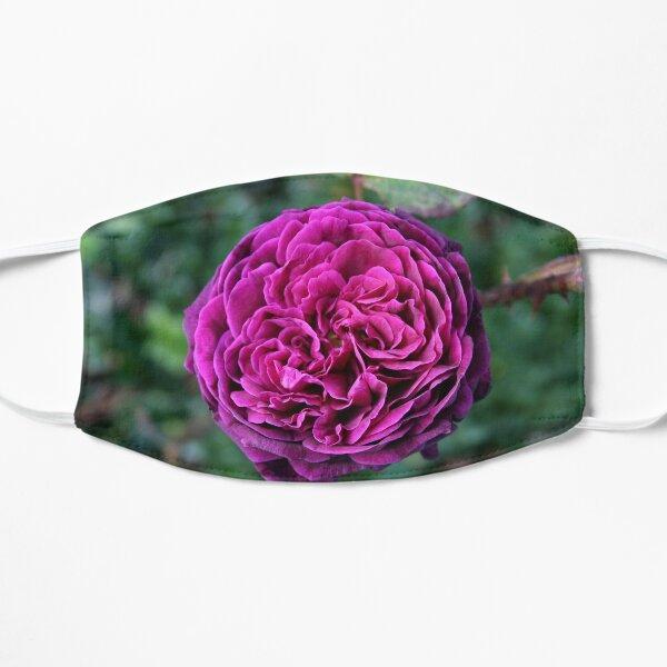 Ebb Tide Rose Mask