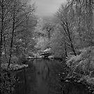 footbridge at lost lagoon by jackson photografix