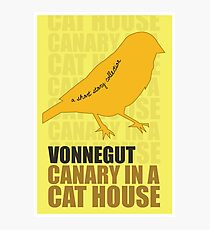 Canary in a Cat House Photographic Print