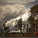 Golden Hour before a Storm (Mt Stromlo in Canberra) by Wolf Sverak