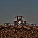 Last Field by Steve Baird