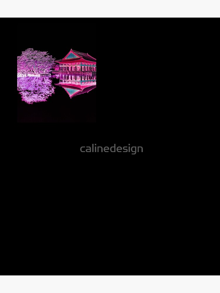 inverted palace by calinedesign