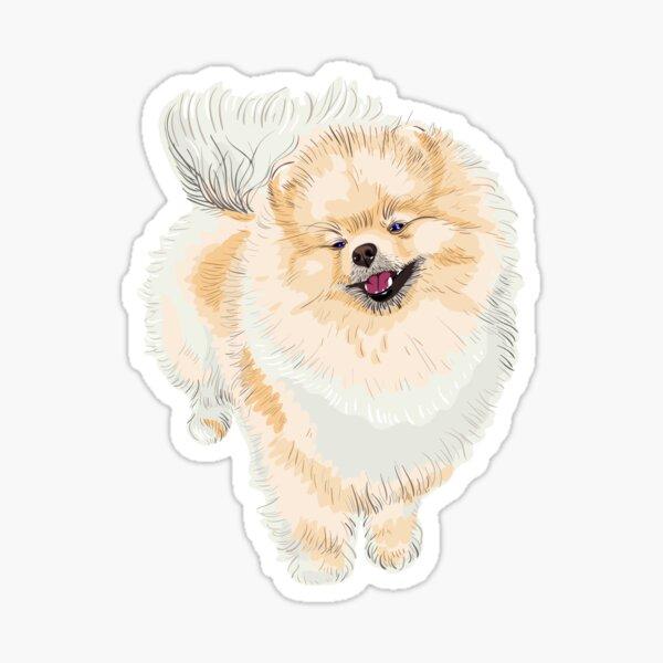 Pomeranian Dog Gift Pomeranian Gift Pomeranian Love Pomeranian Neck Gaiter Pomeranian Dog Pomeranian Mom Pomeranian Mama