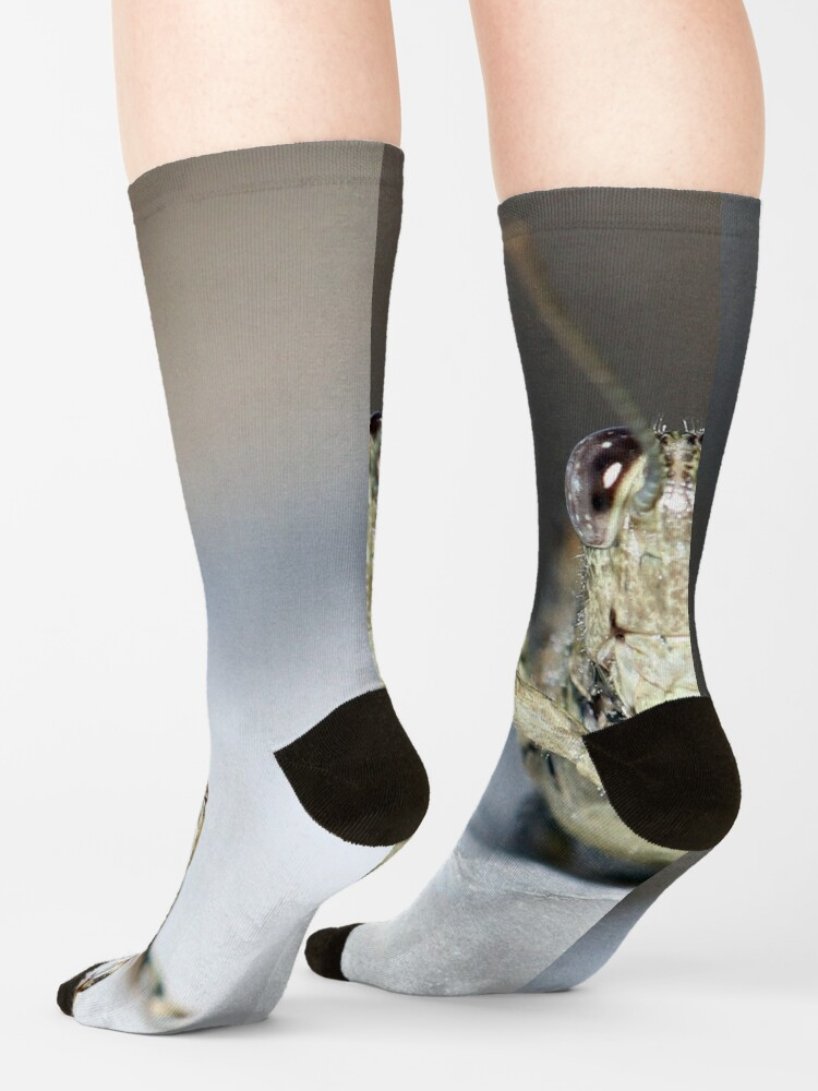 Alternate view of Grasshopper Face Socks