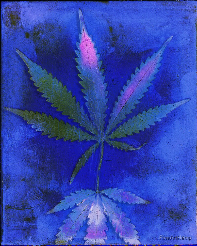 Hemp Lumen #2  Marijuana, Cannabis by FineArtHemp