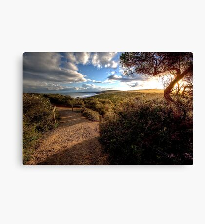 www.LyndenSmith.com - Point Addis Canvas Print