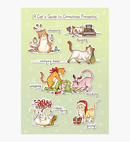 A Cat's Guide to Christmas Presents Photographic Print