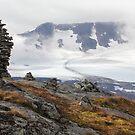 Sognefjellsvegen Norway by Allyeska