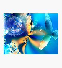 White Bird Photographic Print