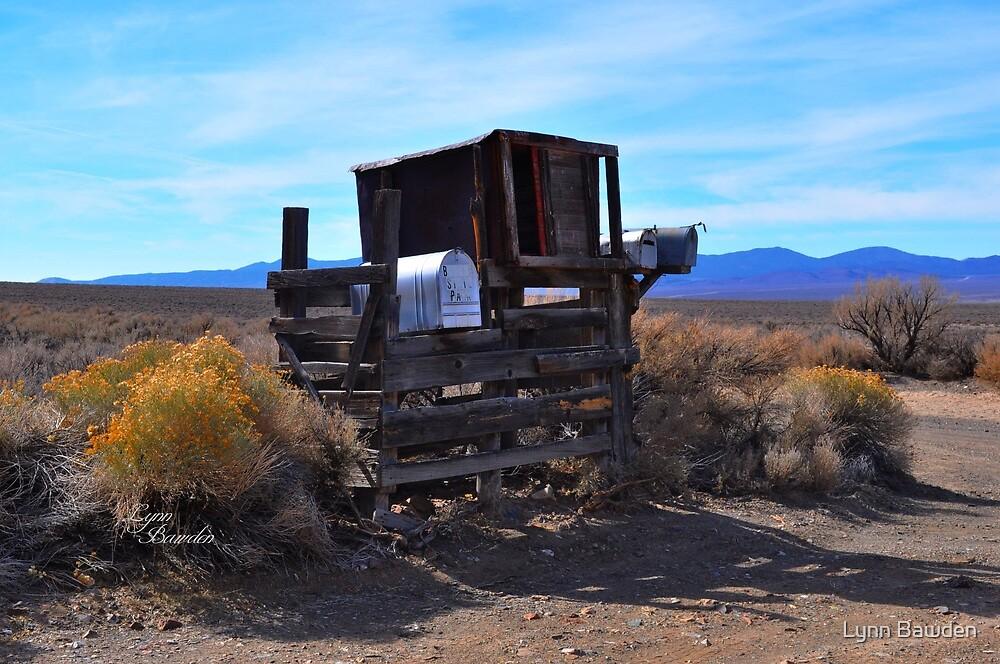 """""""Rural Nevada"""" by Lynn Bawden"""