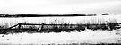 Fence in Snow by Nigel Bangert