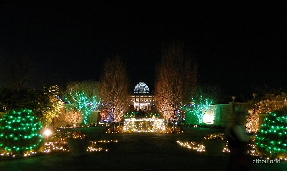 Christmas Lights   ^ by ctheworld